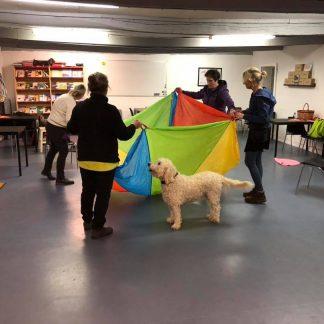 Vårdhund med fallskärm